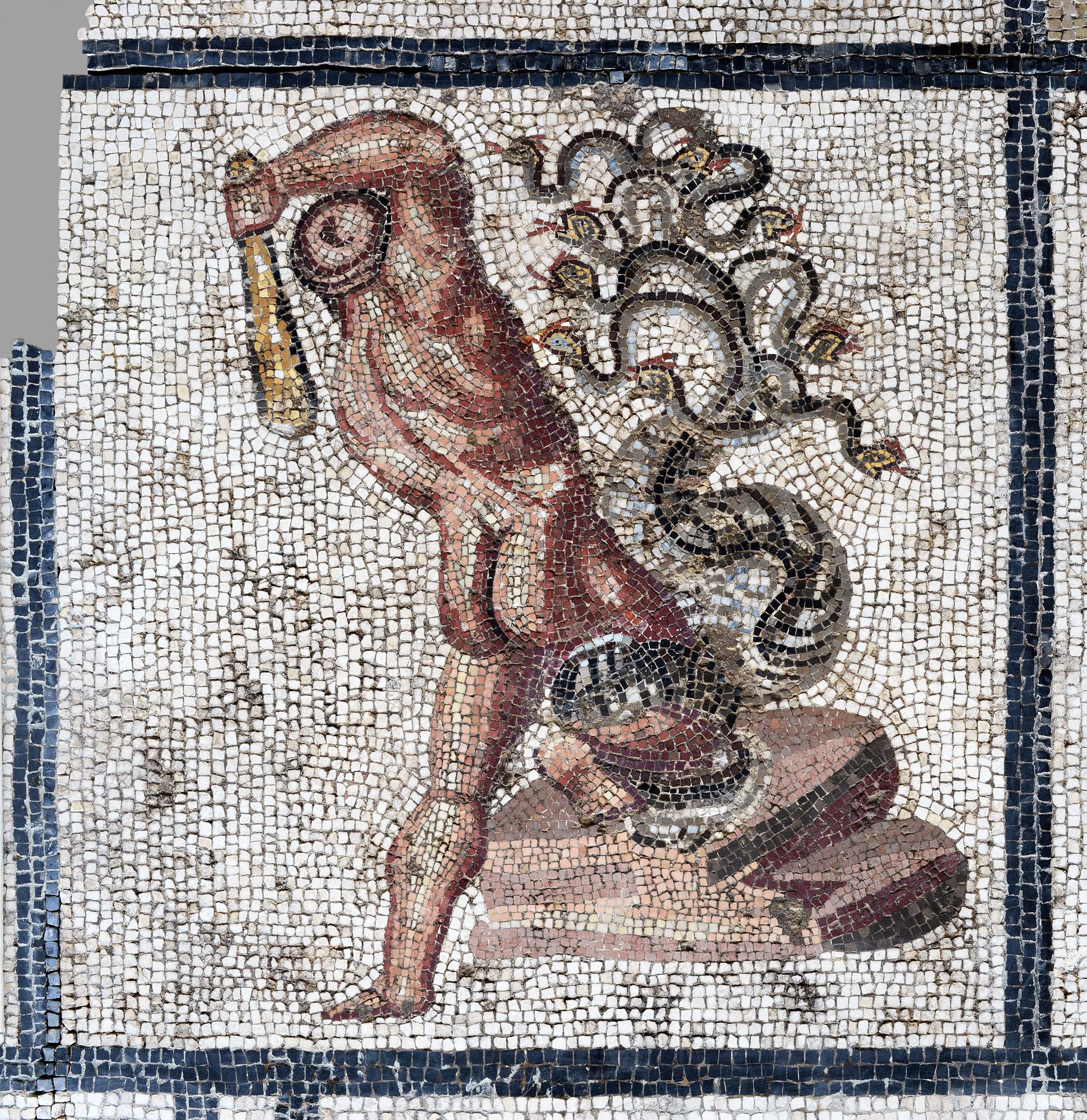 Mosaïque d'Hercule (L'Hydre de Lerne) ©Paul Veysseyre.