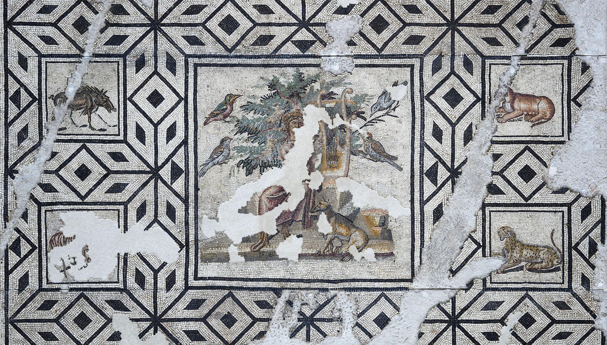 Mosaïque d'Orphée (Partie centrale) ©Paul Veysseyre.